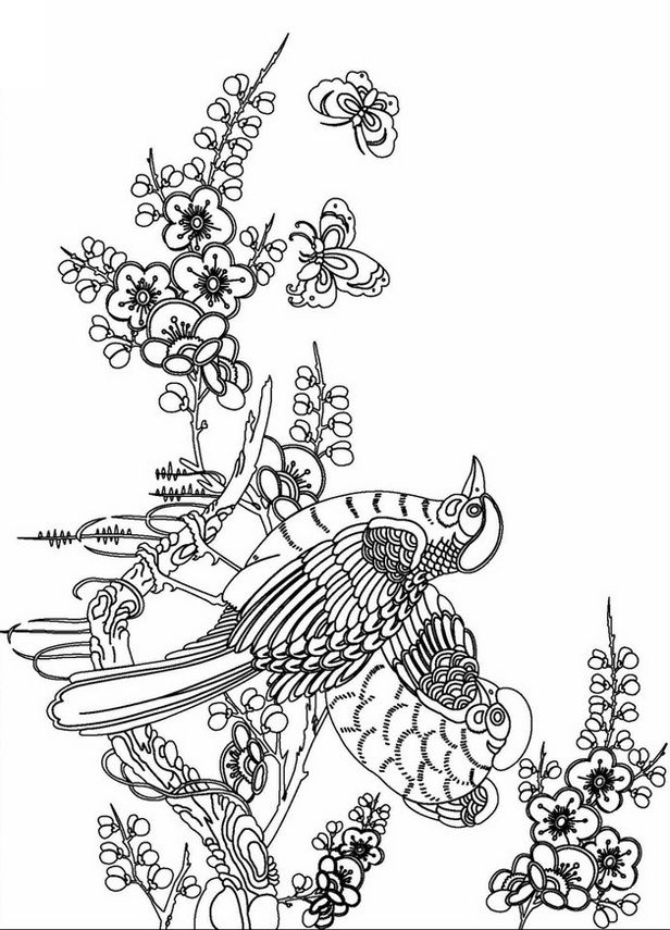 advanced coloring books adult coloring pages - Advanced Coloring Books For Adults