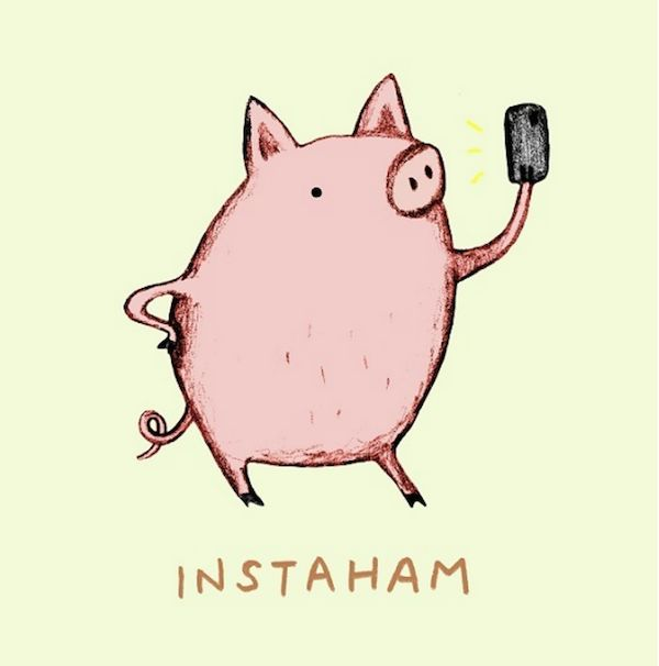 Delightful Illustrated Animal Puns Will Put A Smile On Your Face - DesignTAXI.com