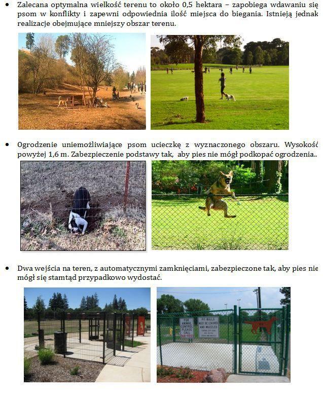 Dog's park.