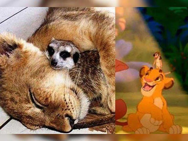 Mesehősök a valóságban | Fotó: sheldonsfans.com