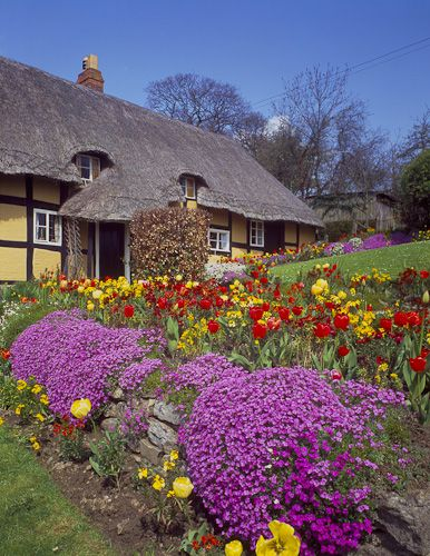 Spring cottage garden...I like the purple hanging over the stone wall.