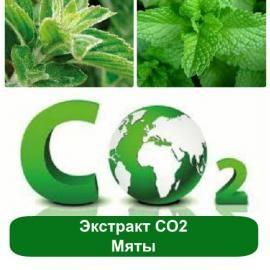 Охлаждающий жидкий СО2 экстракт Мяты для ухода за жирной или проблемной кожей в составе противовоспалительной косметики. Свойства и спектр применения