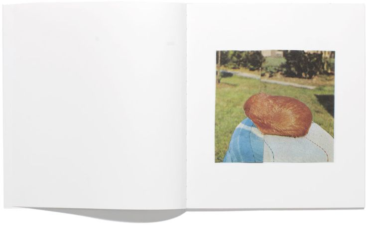 Ruth Van Beek - The Hibernators (2011)