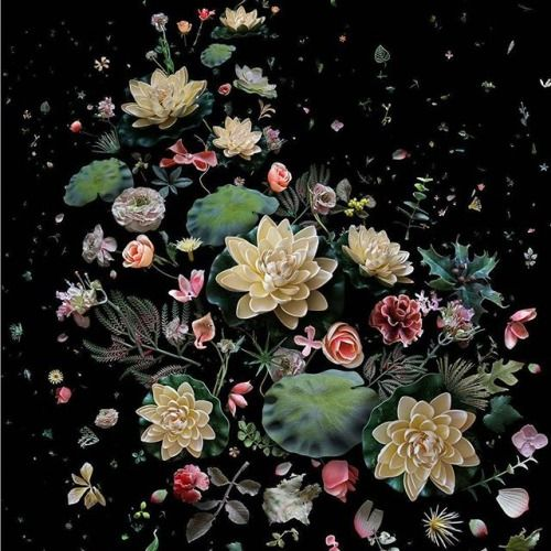 Mandy Barker (@mandybarkerphotography) created striking photographs using the marine waste found on #HongKong beaches. This image Hong Kong Soup:1826 - Lotus Garden evokes the aesthetics of traditional Chinese oil painting with a serious message. A collection of different species of discarded artificial flowers that would not exist at the same flowering time in nature should not be found in the ocean Barker writes It is this paradox of transforming a discarded and harmful object into…