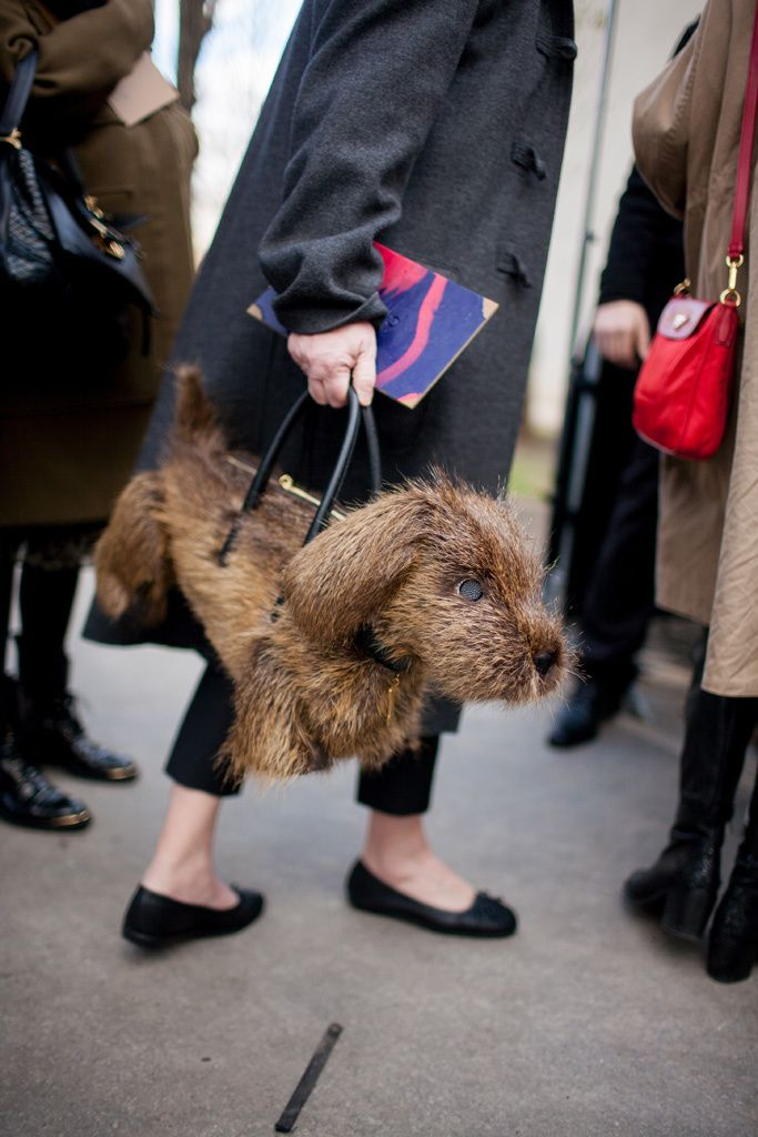 Paris Fashion Week Fall 2016 | street style | Dog purse #PFW [Photo: Kuba Dabrowski]