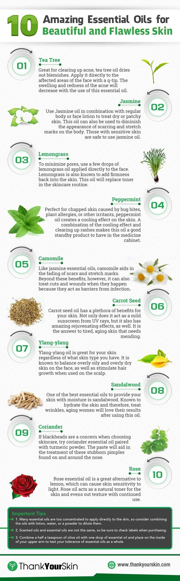 Want to find the best essential oils for skin? Check out the top 10 recommendations selected by our experts.