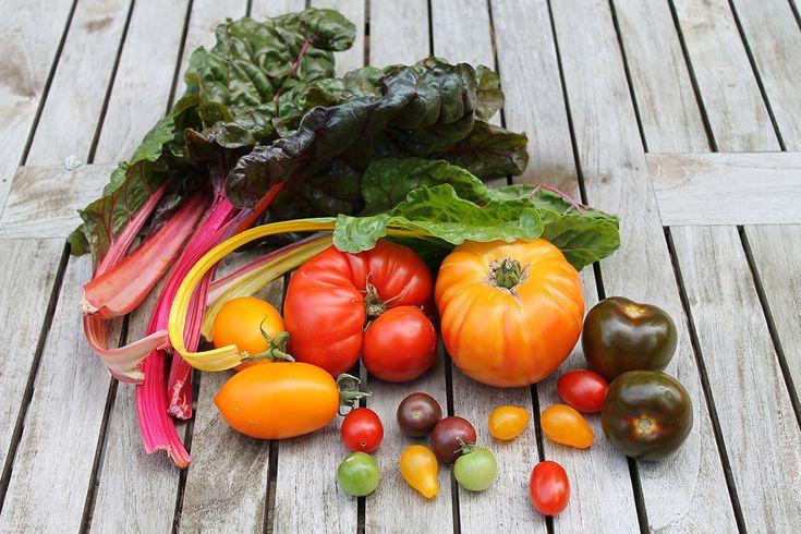 Was tun bei Heißhunger? 10 Tipps | Projekt: Gesund leben | Clean Eating, Fitness & Entspannung