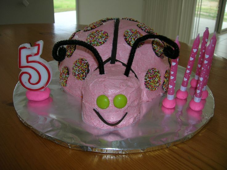 Pink Ladybird for 5th Birthday