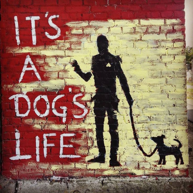 It'a dog's Life  #estonia #tallinn #dog #graffiti #oldtown #travel #europe #viro #itsadogslife #quotes #quote
