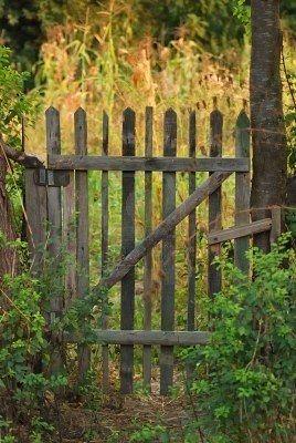 Rustic garden gate.