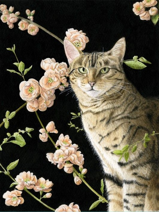 Wildlife and pet portraits in watercolour at Kelly Archer Pet Portraits  #watercolour #watercolor #bengalcat #cat #petportraits #petportrait #catportrait #painting