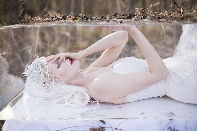 Snow White by adriennemcnellis, via Flickr