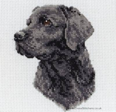 Dogs - Black Labrador - Dog Cross Stitch Kit from Anchor