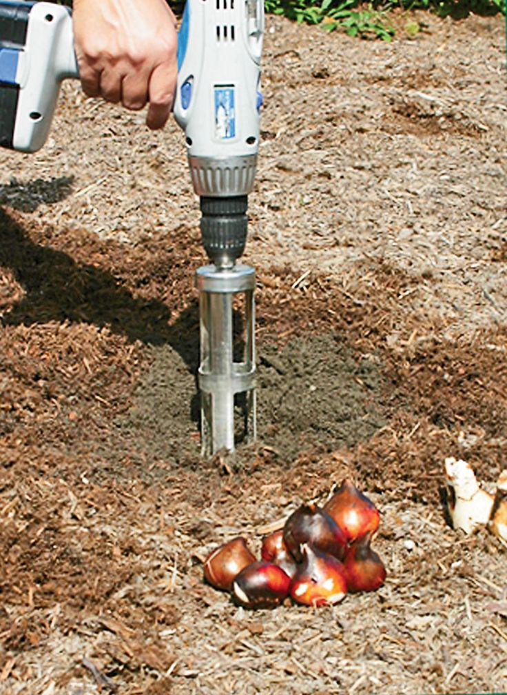 Power Bulb Planter attachment, Bulb Auger | Gardener's Supply.... attaches to a power drill... $35