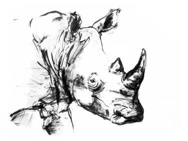 "Saatchi Art Artist David Rabie; Drawing, ""Staring through the mist"" #art"