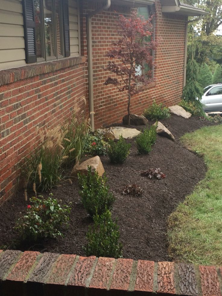 Front yard landscaping with boulders chocolate brown for Easy care shrubs front house
