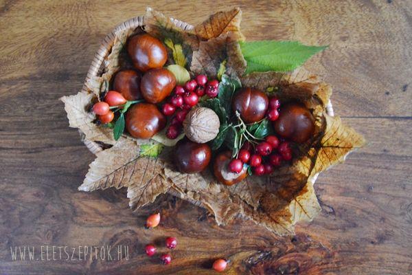 Őszi dekoráció: színes tálka az évszak terményeivel | Életszépítők