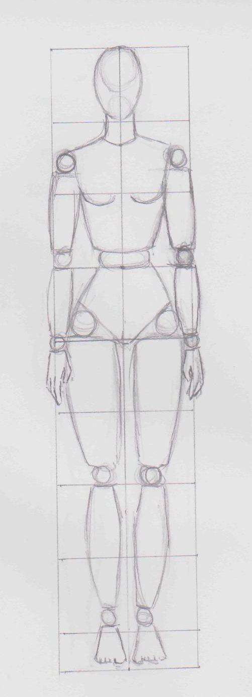Another pin on female body proportions.