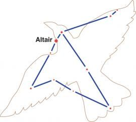 "The brightest star in Aquila is Altair, ""the eagle,"" a white star that is about 17 light-years from Earth. Altair is the southern point of a pattern of three bright stars called the Summer Triangle. (Deneb, in the constellation Cygnus, forms the triangle's northeastern point. Vega, in Lyra, the harp, is in the northwest. Altair is nice and bright and easy to find right up to the beginning of winter.)"