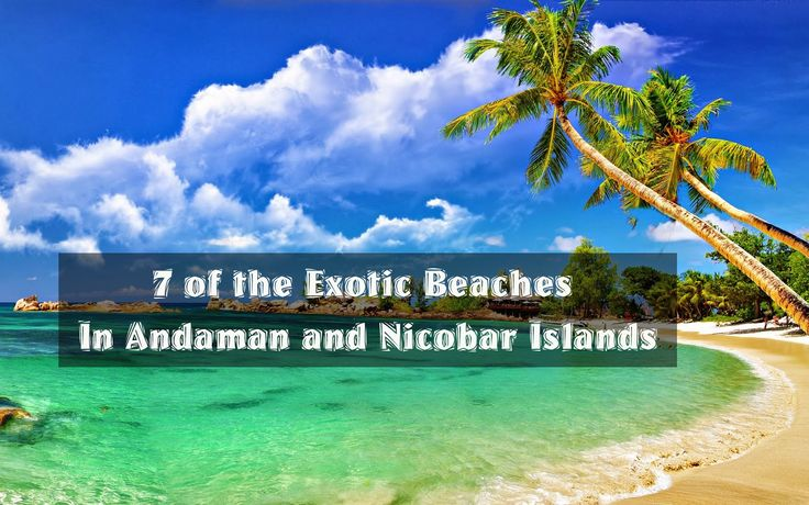 7 of the Exotic Beaches in Andaman and Nicobar Islands