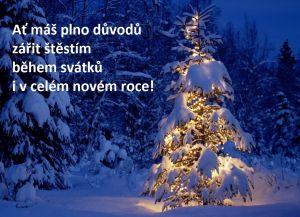Vánoční-přání-ke-stažení-štěstí