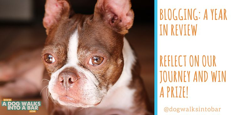 Our one year blog anniversary just passed.  Read about what we learned about blogging about dogs, and beer, and everything in between.  Enter to win in our giveaway for a chance to have a donation to a local animal shelter made in your name and a fancy A Dog Walks into a Bar t shirt.