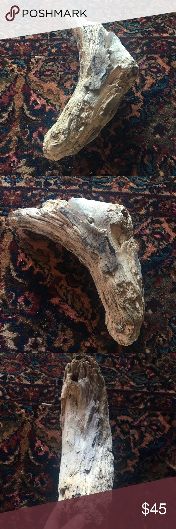 San Francisco Driftwood Original & Authentic Californian driftwood. Picked and curated from a undisclosed beach in San Francisco. Smell the ocean and taste the sand from the prestigious west coast. This piece is Alive. Accessories