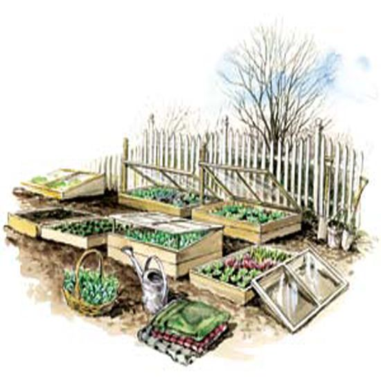 Garden With Cold Frames to Grow More Food 550