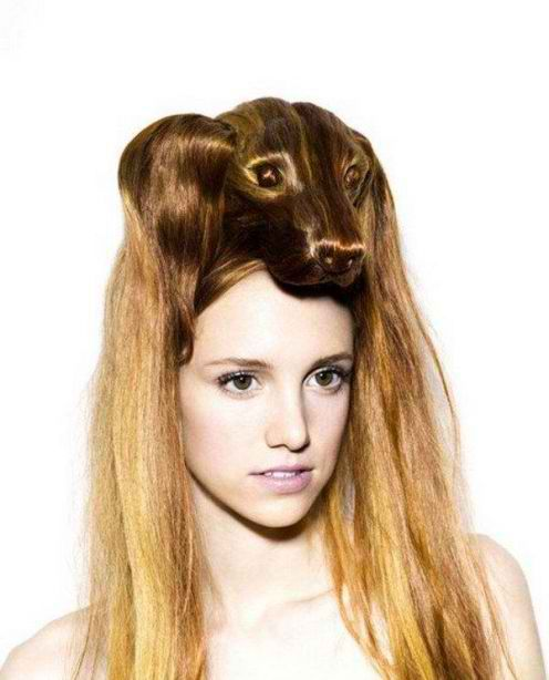 Funny Hairstyles - Animal Shape (6)