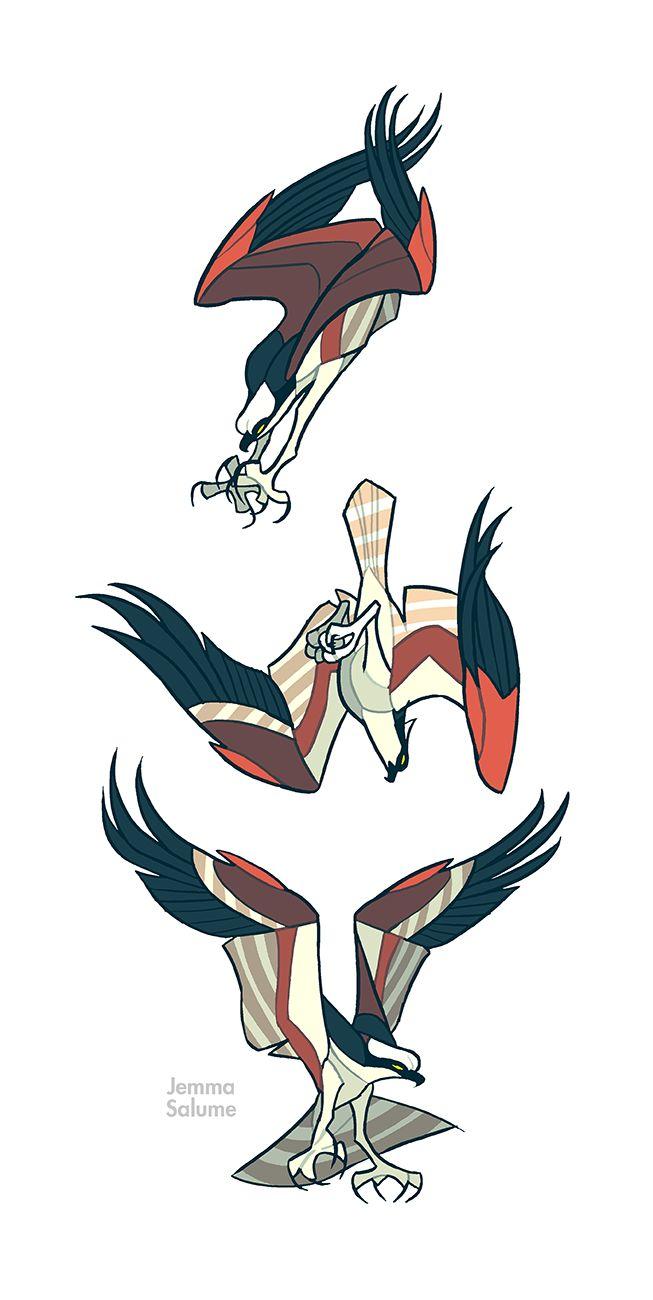 Studies - Osprey by *oxboxer on deviantART