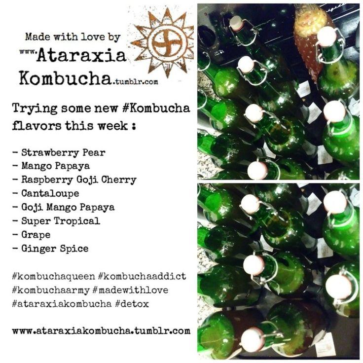 Trying some new #Kombucha flavors this week : - Strawberry Pear - Mango Papaya - Raspberry Goji Cherry - Cantaloupe - Goji Mango Papaya - Super Tropical - Grape - Ginger Spice #kombuchaqueen #kombuchaaddict  #kombuchaarmy #madewithlove  #ataraxiakombucha #detox www.ataraxiakombucha.tumblr.com