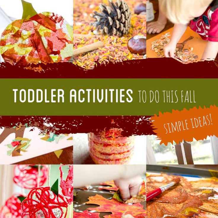 Before your toddler isn't a toddler anymore, these Fall toddler activities (including a bucket list) will create memories. From trees to leaves and apples to pumpkins!