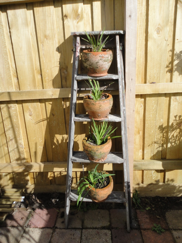 My step ladder garden. Pots are secured by hammering a long nail into step & placing pot over it through hole in bottom of pot. Ladder is also secured to fence.