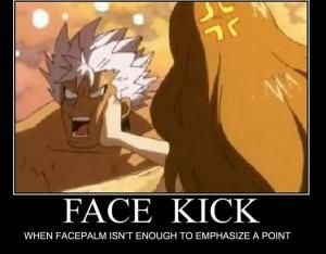 "8 Funny Fairy Tail Memes Anime Fans Will Love: ""Face Kick"" Fairy Tail Meme"