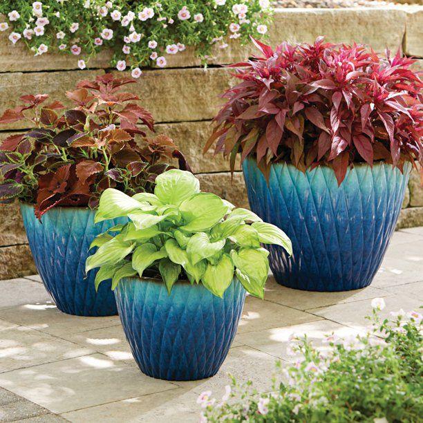 61fab80e3ce6436ad67b8e2c98cbd056 - Better Homes And Gardens 16 Inch Round Planter