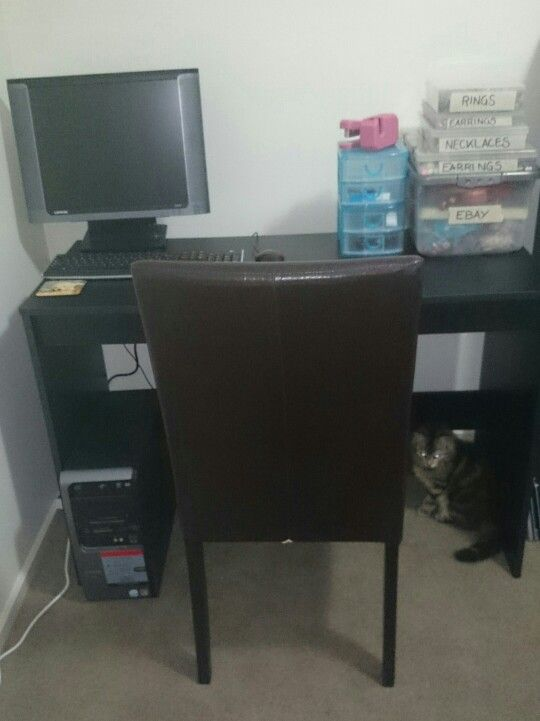 My uninspiring workspace.. With my cat making a guest appearance!