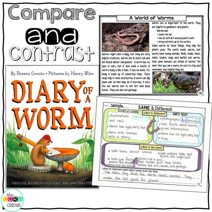 Diary Of A Worm: 1000+ Images About Best Of Second Grade On Pinterest