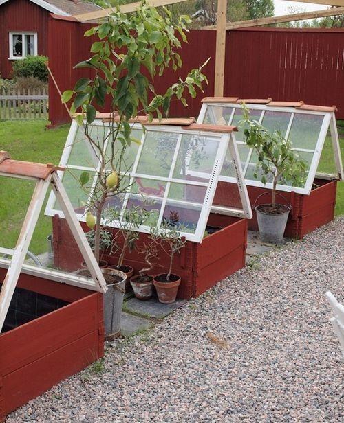 11 fina miniväxthus på liten yta | LAND.se