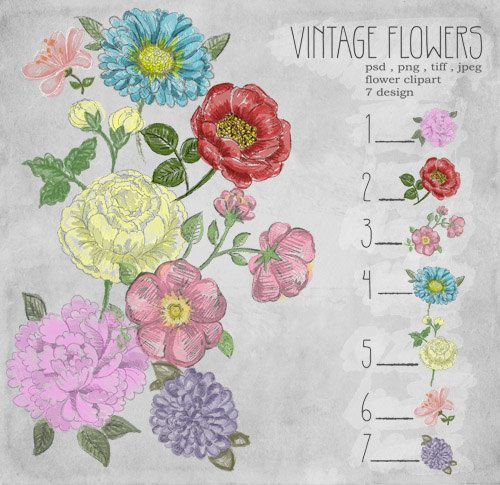 vintage flower clipart by luckymooon on Etsy, $2.00