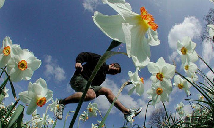 Agresszív pollen – súlyosabb allergia. Van szabadulás! http://www.ambulanciak.hu/index.php/agressziv-pollen-sulyosabb-allergia-2/