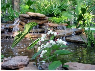 How to Build an Above Ground Pond thumbnail