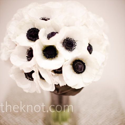 White anemones with black centers bring the drama.