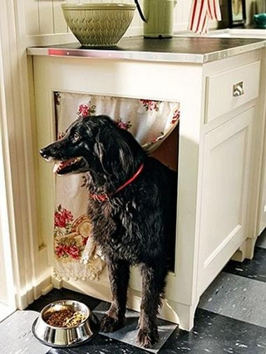 Pet Projects: Home Design Ideas For Your Furry Friends