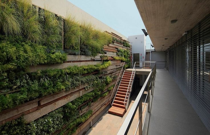 designed by gonzalez moix arquitectura, lima, peru.  Vertical greenery on recycled timber planks reacts with the concrete/ glass architecture of zentro commercial and office building.