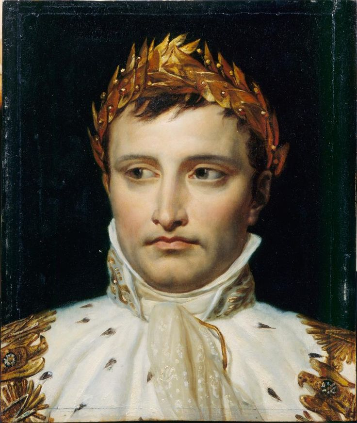 an analysis of napoleon bonaparte Leadership analysis – napoleon but one of the retreat leaders who have marked europe and a large part of the world is napoleon bonaparte to understand the impact he had on the modern world you just have to look around, mainly in france.