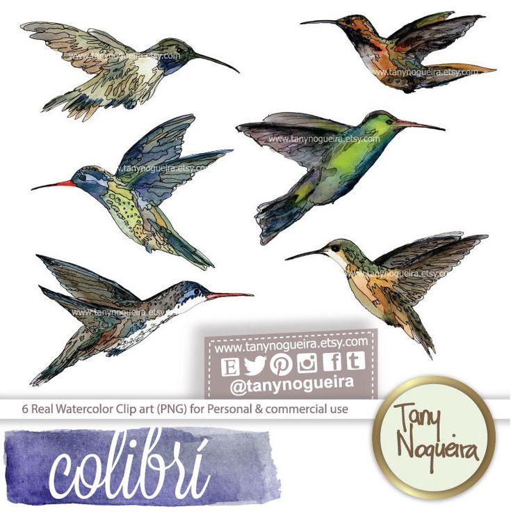 Watercolor hummingbirds https://www.etsy.com/mx/listing/199578501/colibri-clip-art-png-fondo-transparente #hummingbirds #Watercolor #INK #designkit #clipart #PNG #clipart