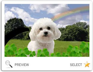 Just Dropping In: St. Patrick's Day ecard with dogs
