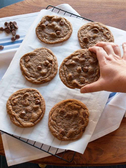 Speculaas chocolate chip koekjes
