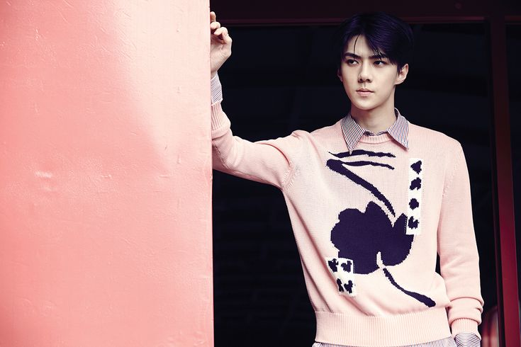 Sehun - EXO Repackage Album 'LOVE ME RIGHT'