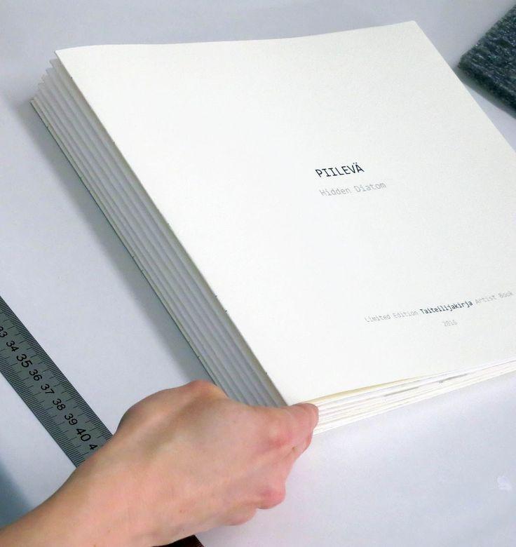 Rauman Taidegraafikot, taidegrafiikka, prints, printmakers, taide, kuvataide